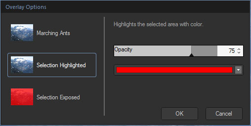 Overlay Options