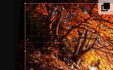 Geometrie-/Reparatur-Werkzeuge