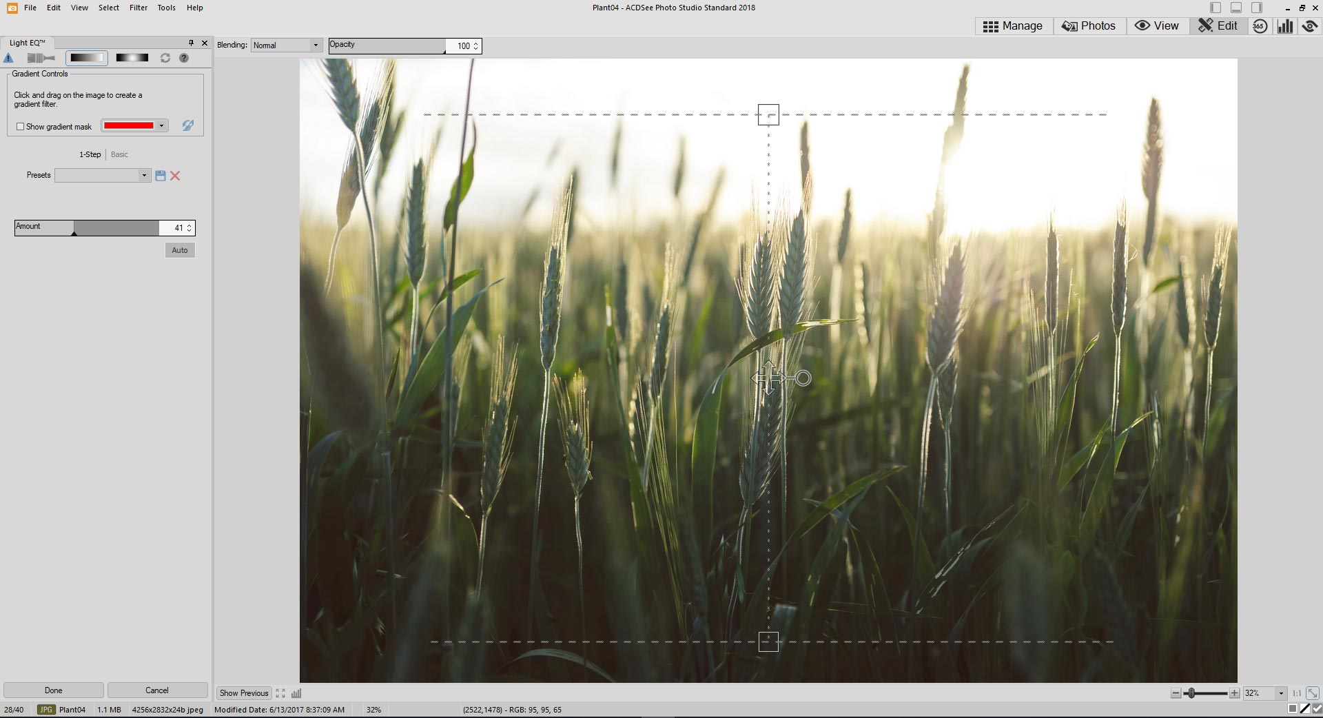 ACDSee Photo Studio Standard 2018 | Organize, edit, and share your ...